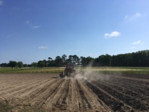 Cover photo for PFP21: Soybean Planting Date
